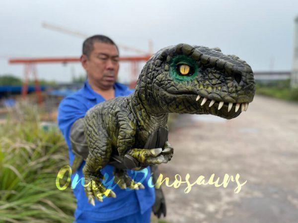 Stunning-T-Rex-Dinosaur-Hand-Puppet2