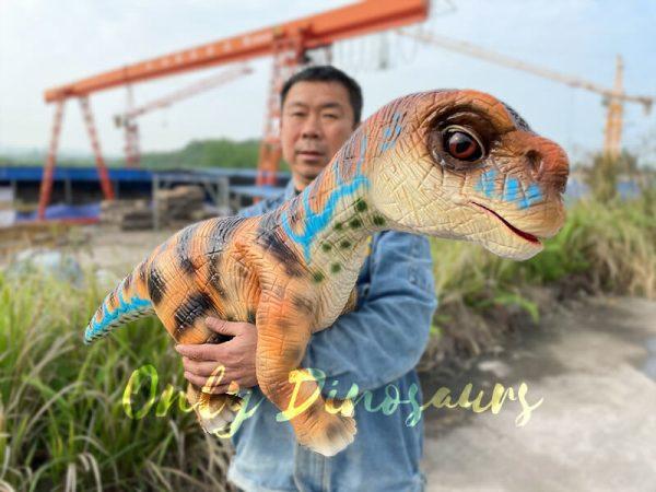 Uplifting-Baby-Brachiosaurus-Hand-Puppet1-1