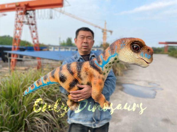 Uplifting-Baby-Brachiosaurus-Hand-Puppet6-1