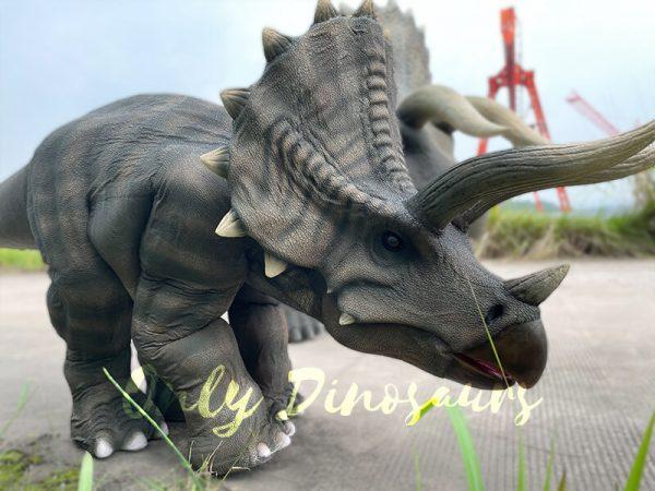 Vivid-Single-Man-Triceratops-Dinosaur-Costume4