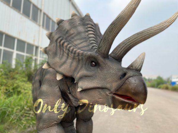 Vivid-Single-Man-Triceratops-Dinosaur-Costume5