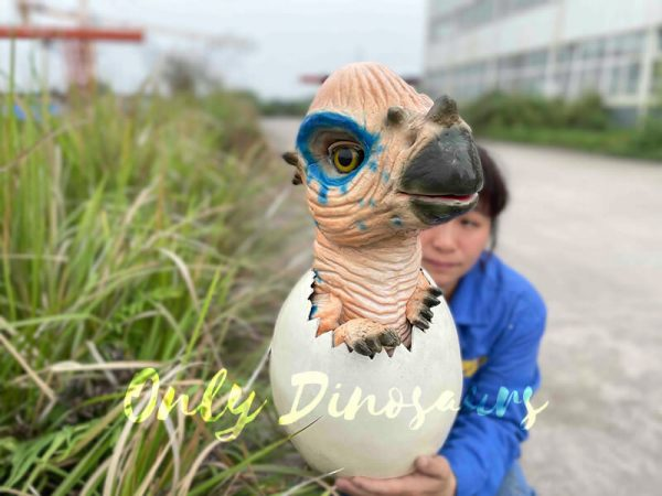 Wondrous-Pachycephalosaurus-Hatching-Dinosaur-Egg-Puppet3