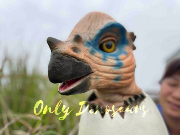 Wondrous-Pachycephalosaurus-Hatching-Dinosaur-Egg-Puppet4