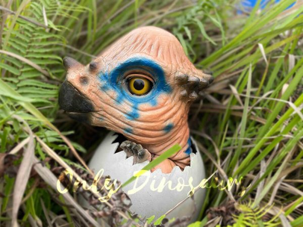 Wondrous-Pachycephalosaurus-Hatching-Dinosaur-Egg-Puppet5