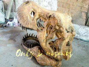 Big Tyrannosaurus Rex Skull Fossil for Museum