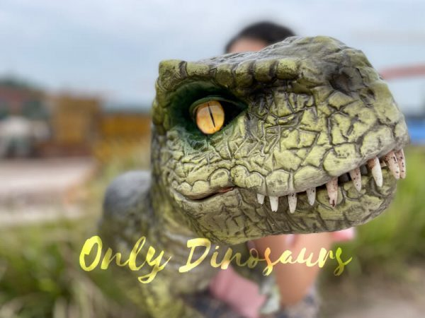 Lifelike-Baby-T-Rex-Dino-Hand-Puppet3