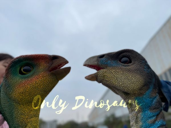 Portable-Weewarrasaurus-Dino-Puppet-for-Sale5