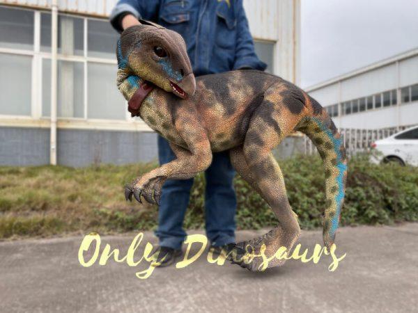 Portable-Weewarrasaurus-Dino-Puppet-for-Sale6