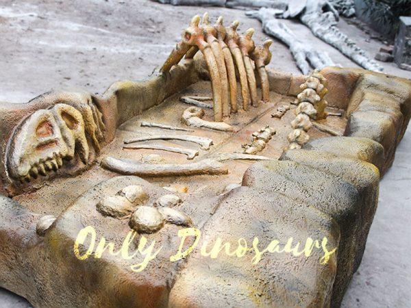 Realistic-Dino-Fossil-Dig-Replica4