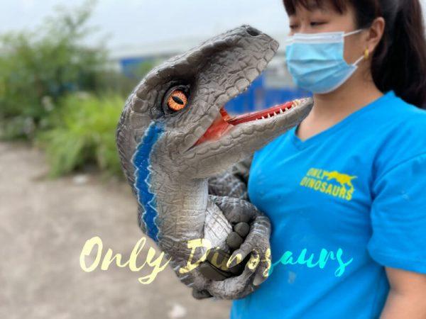 Realistic-False-Arm-Raptor-Dino-Puppet5