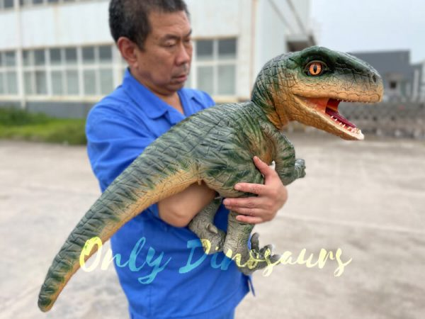 Realistic-Raptor-Dinosaur-Hand-Puppet-for-Kids4