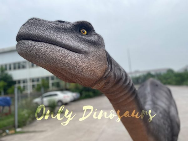 Realistic-Two-person-Brontosaurus-Dinosaur-Costume1