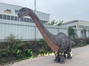 Realistic Two-person Brontosaurus Dinosaur Costume