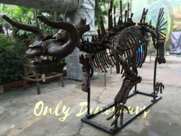 The-Skeleton-of-Makara-for-Exhibition5