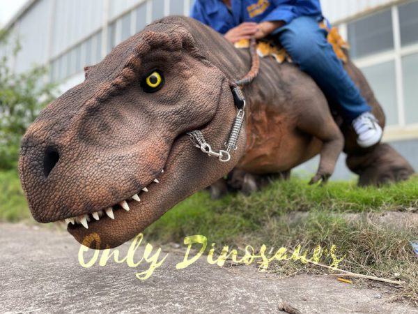Wonderful-T-Rex-Stilts-Dinosaur-Costume-for-Sale1