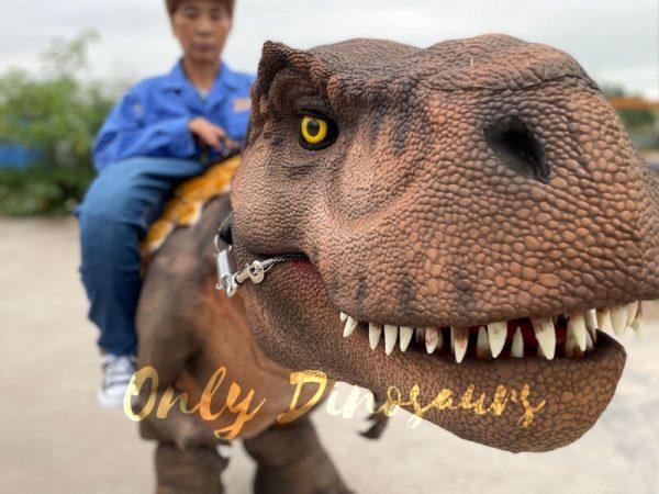 Wonderful-T-Rex-Stilts-Dinosaur-Costume-for-Sale2
