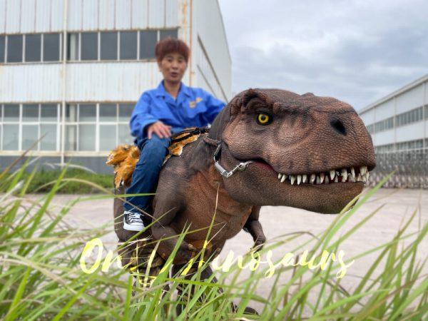 Wonderful-T-Rex-Stilts-Dinosaur-Costume-for-Sale3