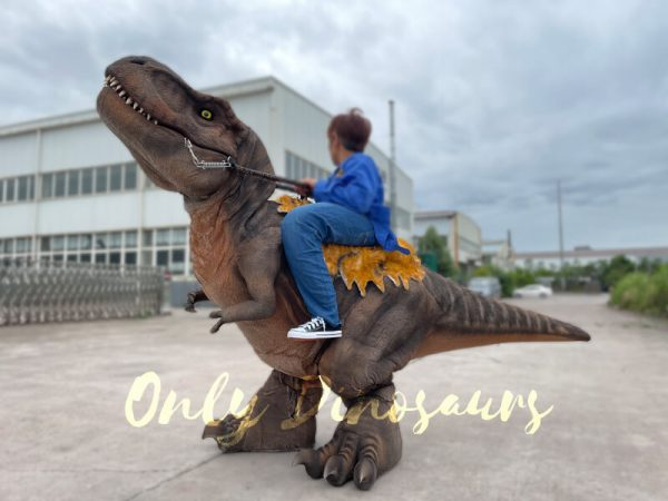 Wonderful-T-Rex-Stilts-Dinosaur-Costume-for-Sale5
