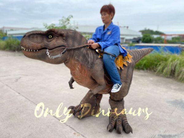 Wonderful-T-Rex-Stilts-Dinosaur-Costume-for-Sale6