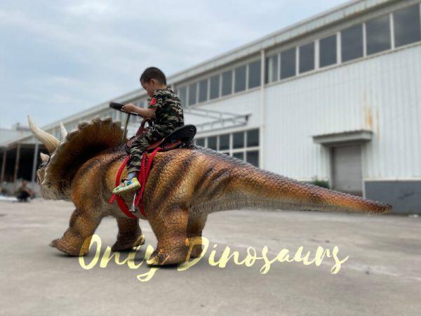 Wonderful-Walking-Dinosaur-Triceratops-Kids-Ride3