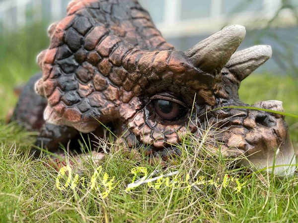 The Head of a Cute Baby Animatronic Triceratops