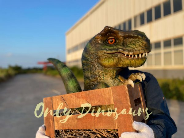 Adorable-Crate-Baby-T-Rex-Puppet-4