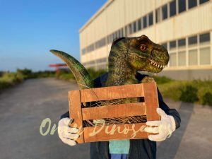 Adorable Crate Baby T-Rex Puppet
