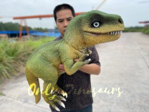 Adorable T-Rex Hand Puppet for Party
