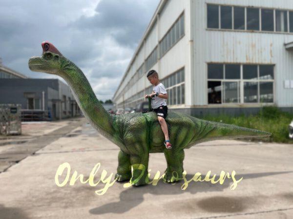 Animatronic-Brachiosaurus-Walking-Dinosaur-Ride1