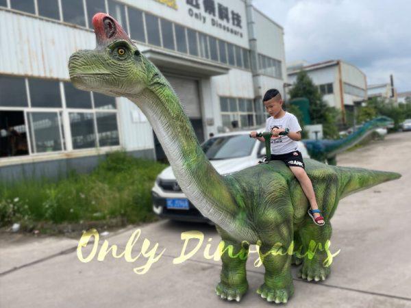 Animatronic-Brachiosaurus-Walking-Dinosaur-Ride5