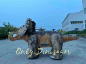 Baby Triceratops Dino Ride for Kids