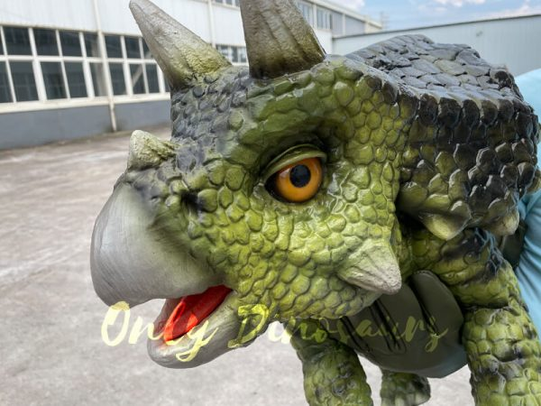 The Head of the Dark Green Baby Triceratops