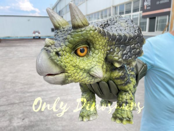 A Person Carrying a Dark Green Baby Triceratops