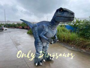 Hidden Legs Blue Raptor Dinosaur Costume for Sale