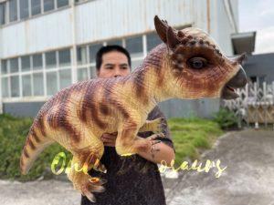 Lifelike Stygimoloch Baby Dino Puppet