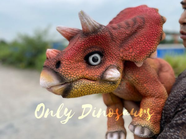 Realistic-Baby-Dino-Triceratops-Puppet2