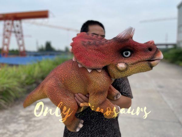 Realistic-Baby-Dino-Triceratops-Puppet4