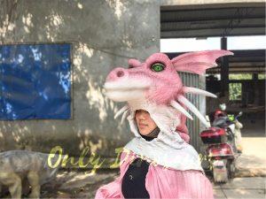 Shrek Dragon Head Costume for Stage Show
