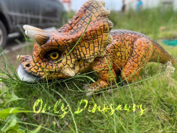 Vivid-Baby-Triceratops-Dino-Hand-Puppet1