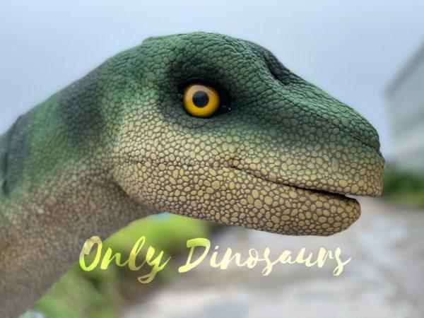 Vivid-Brontosaurus-Dino-Shoulder-Puppet3
