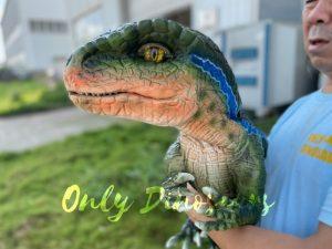 Vivid Hand Velociraptor Puppet for Sale