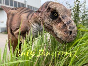 Vivid T-Rex Dino Costume for Sale
