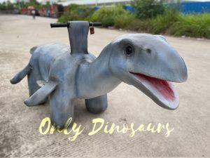 Wonderful Dinosaur Plesiosaur Ride for Park