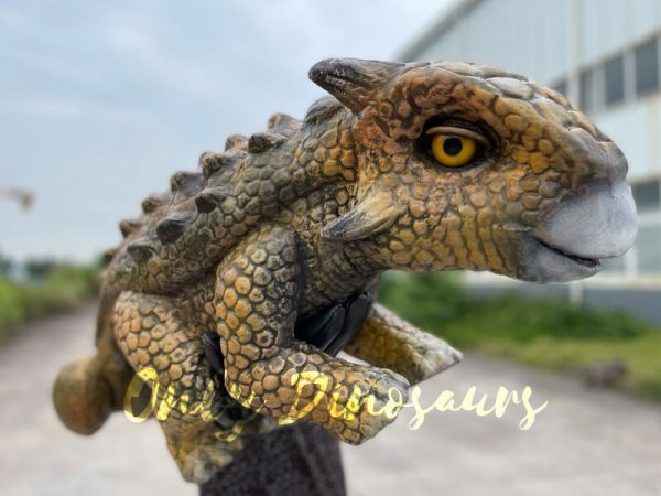 Wonderful-False-Arm-Ankylosaur-Dino-Puppet5