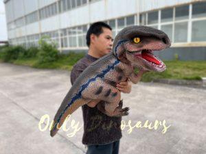 Wonderful Raptor Dino Hand Puppet for Sale