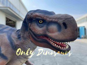 Awe-inspiring T-Rex Costume for Sale