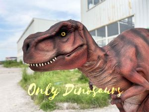 Dangerous Predator T-Rex Costume for Adult