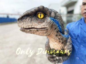 False Arm Realistic Raptor Dino Puppet