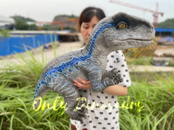 A Woman Carrying a Grey Baby Raptor with Blue Stripes