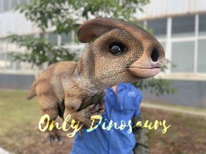 False Arm Baby Parasaurolophus Puppet for Kids